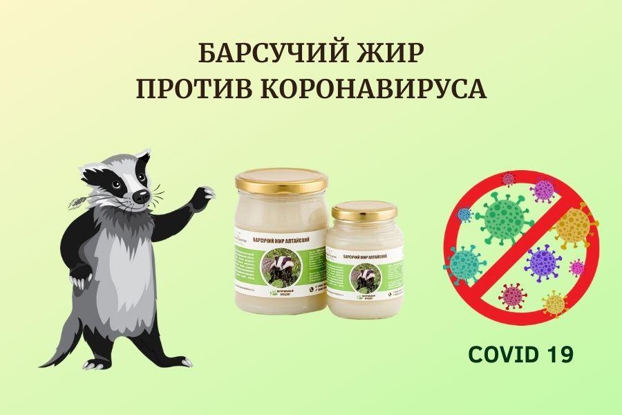 Барсучий жир против коронавируса